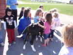 The calf giving the kids kisses