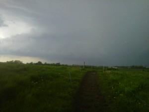 storm, farm, pasture, tornado, organic