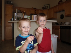 boys breaking wishbone, chicken, children, kids, cooking, traditions