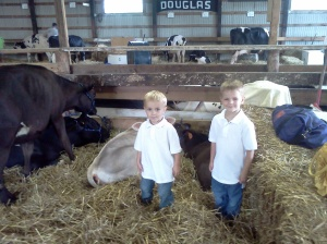 calves, erik, jonnie, dakota county fair, 2011